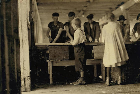 "Interior of a cutting shed in Maine. Young cutters at work, Clarence, 8 years, and Minnie, 9 years. Photo does not show the salt water in which they often stand, not [i.e., nor?] the refuse they handle. On the low shelf are two of the ""boxes"" used as measures, and for which they get 5 cents a box. Location: Eastport, Maine, August 1911, Lewis Hine."