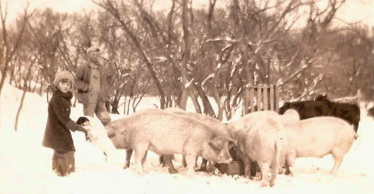 Claudine Abele with father Jake, and the hogs, 1930s