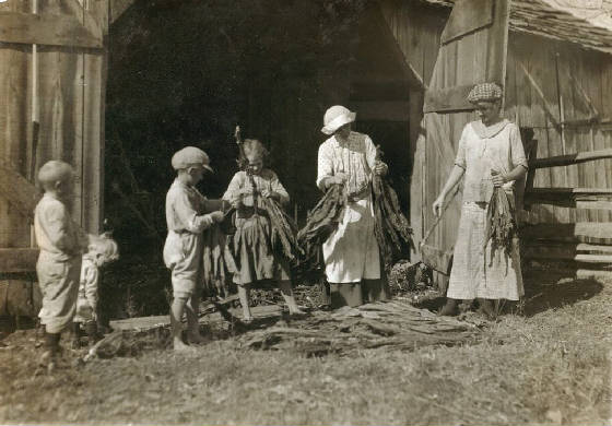 (L-R): Carl, Ruth, Elwood, Blanche, Angie, Nell. Photo by Lewis Hine.