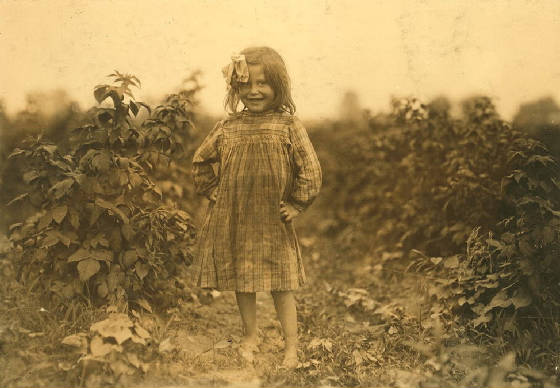 Laura Petty, near Baltimore, Maryland, July 8, 1909. Photo by Lewis Hine.