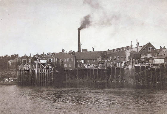 Seacoast Canning Co. (where Elsie worked), Eastport, Maine, 1911, photo by Lewis Hine