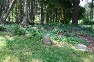 Quabbin Park Cemetery, 2011. CLICK TO ENLARGE.