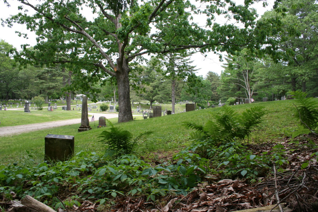 Quabbin Park Cemetery, 2011. Note stone in the foreground, lower left of photo. CLICK TO ENLARGE.