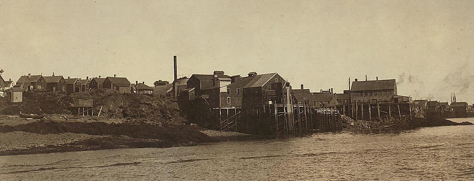 Seacoast Cannery #7 (where Grayson worked), Eastport, ME. Photo by Lewis Hine.
