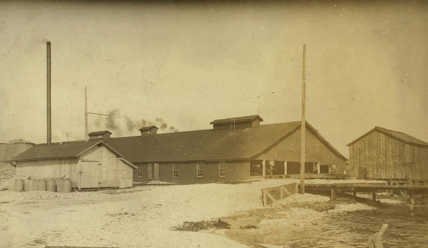 Dunbar & Dukate oyster cannery. According to the testimony of a number of the parents and children, this factory reverses the child labor law to suit its own convenience, and probably to avoid detection. Instead of excluding the young children from work before six o'clock according to the law, they let the young children work from four until seven, and then send them home. Biloxi, Mississippi, February 1916, Lewis Hine.