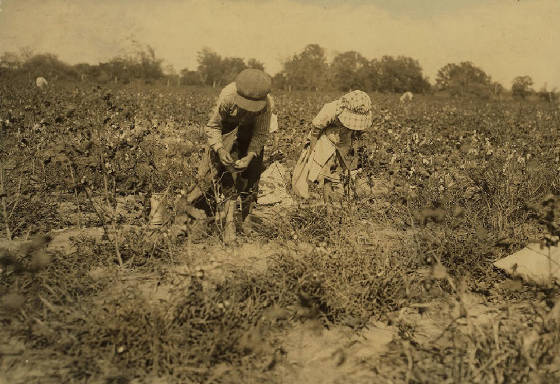 Elbert (left), 10, and Ruby Hollingsworth, 7, Denison, Texas, September 1913. Photo by Lewis Hine.