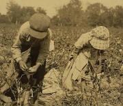 Elbert & Ruby Hollingsworth, Denison, Texas