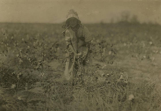 Ruby Hollingsworth, Denison, Texas, September 1913. Photo by Lewis Hine.