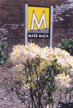 MassMoCALogo2000.jpg